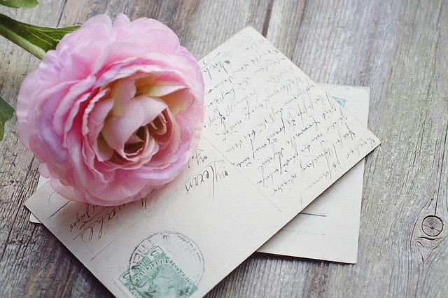 růže na pohlednicích