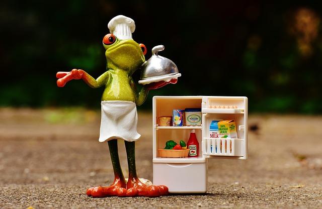žába s lednicí