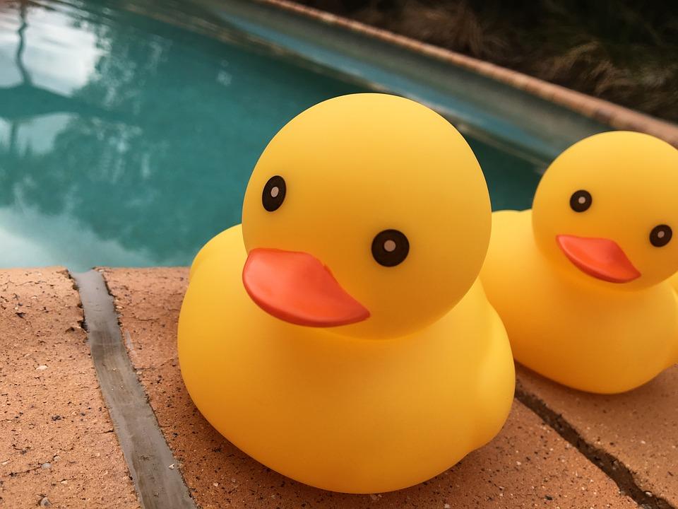 kachničky u bazénu
